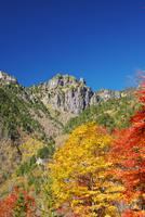 錫杖岳と紅葉