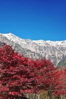 笠ヶ岳と紅葉