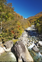 新穂高の湯と蒲田川の紅葉 26120041991| 写真素材・ストックフォト・画像・イラスト素材|アマナイメージズ