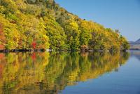 屈斜路湖と和琴半島の紅葉 26120042015  写真素材・ストックフォト・画像・イラスト素材 アマナイメージズ