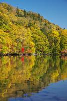 屈斜路湖と和琴半島の紅葉 26120042018  写真素材・ストックフォト・画像・イラスト素材 アマナイメージズ