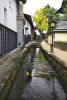 瀬戸川と白壁土蔵街 26120042069| 写真素材・ストックフォト・画像・イラスト素材|アマナイメージズ