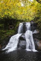 宇津江四十八滝の秋 26120042079| 写真素材・ストックフォト・画像・イラスト素材|アマナイメージズ