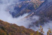 平湯温泉の紅葉と朝霧