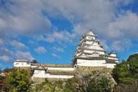 姫路城の秋 26120042187| 写真素材・ストックフォト・画像・イラスト素材|アマナイメージズ