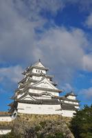 姫路城の秋 26120042189| 写真素材・ストックフォト・画像・イラスト素材|アマナイメージズ