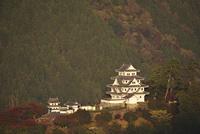 郡上八幡城の朝 26120042241| 写真素材・ストックフォト・画像・イラスト素材|アマナイメージズ