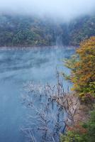 徳山湖の朝と紅葉 26120042249| 写真素材・ストックフォト・画像・イラスト素材|アマナイメージズ