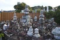 楊貴妃の墓 26120042557| 写真素材・ストックフォト・画像・イラスト素材|アマナイメージズ