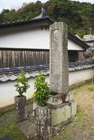 青海島 鯨墓 26120042579| 写真素材・ストックフォト・画像・イラスト素材|アマナイメージズ