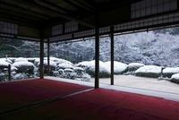 雪の詩仙堂 庭園