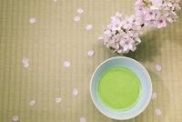 抹茶茶わんと桜と花びら
