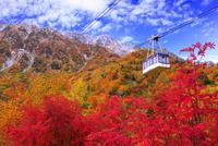 紅葉の立山ロープウェイ