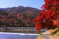 紅葉の嵐山と渡月橋
