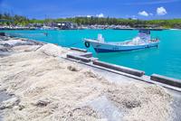 宮古島の狩俣漁港