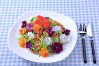 食用花の野菜サラダ
