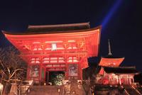 夜間特別拝観の清水寺
