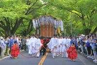 葵祭 26121030013| 写真素材・ストックフォト・画像・イラスト素材|アマナイメージズ