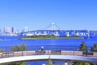 お台場海浜公園 26121030901  写真素材・ストックフォト・画像・イラスト素材 アマナイメージズ