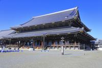 東本願寺  26121031114| 写真素材・ストックフォト・画像・イラスト素材|アマナイメージズ