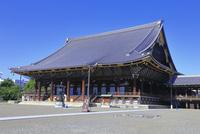 東本願寺  26121031116| 写真素材・ストックフォト・画像・イラスト素材|アマナイメージズ
