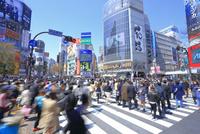 渋谷のスクランブル交差点 26121031444| 写真素材・ストックフォト・画像・イラスト素材|アマナイメージズ