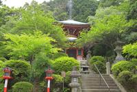 新緑の鞍馬寺 26121031547| 写真素材・ストックフォト・画像・イラスト素材|アマナイメージズ