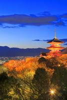 早春のライトアップの清水寺 26121031556| 写真素材・ストックフォト・画像・イラスト素材|アマナイメージズ