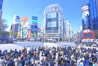 渋谷のスクランブル交差点 26121031605| 写真素材・ストックフォト・画像・イラスト素材|アマナイメージズ