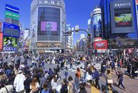 渋谷のスクランブル交差点 26121031630| 写真素材・ストックフォト・画像・イラスト素材|アマナイメージズ