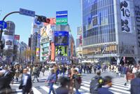 渋谷のスクランブル交差点 26121031649| 写真素材・ストックフォト・画像・イラスト素材|アマナイメージズ