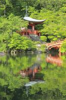醍醐寺 26121031723| 写真素材・ストックフォト・画像・イラスト素材|アマナイメージズ