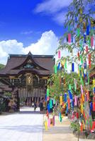 北野天満宮の七夕祭 26121032275| 写真素材・ストックフォト・画像・イラスト素材|アマナイメージズ