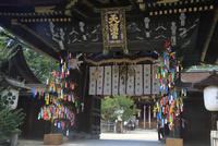 北野天満宮の七夕祭 26121032281| 写真素材・ストックフォト・画像・イラスト素材|アマナイメージズ