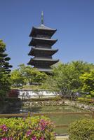 備中国分寺 26134000658| 写真素材・ストックフォト・画像・イラスト素材|アマナイメージズ