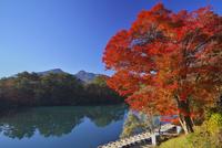 五色沼より磐梯山と紅葉 26134001395| 写真素材・ストックフォト・画像・イラスト素材|アマナイメージズ