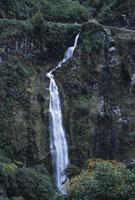 道路ばたの滝