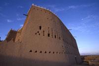 ディライヤ城