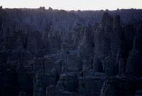 砂岩の森夕景