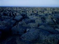 タッシリ・ナジェール夕景 26140001153| 写真素材・ストックフォト・画像・イラスト素材|アマナイメージズ