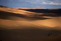 砂丘と雲の影