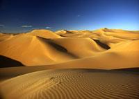 砂丘 26140001189| 写真素材・ストックフォト・画像・イラスト素材|アマナイメージズ