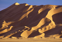 大砂丘の麓を行く車