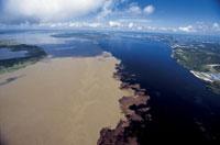 アマゾン本流とリオ・ネグロの合流点