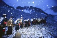 星と雪の巡礼祭コイユリーテ