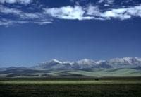 夏の草原 26140001539| 写真素材・ストックフォト・画像・イラスト素材|アマナイメージズ