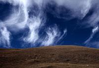 晩秋の雲 26140001545  写真素材・ストックフォト・画像・イラスト素材 アマナイメージズ