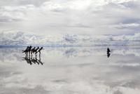 salar de uyuni 雨期 26140001931| 写真素材・ストックフォト・画像・イラスト素材|アマナイメージズ
