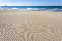 浅利海岸の風紋と寄せる波