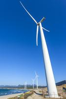 浅利海岸に並ぶ風車